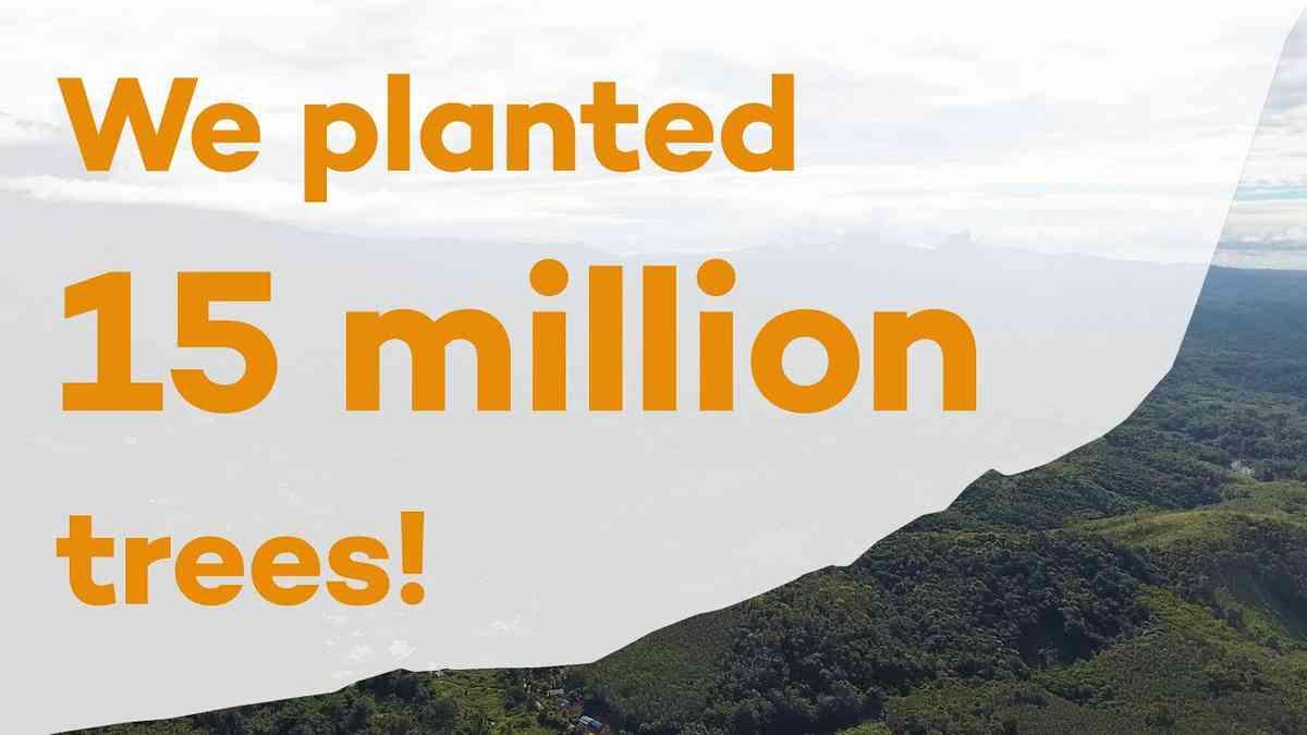 15 million trees