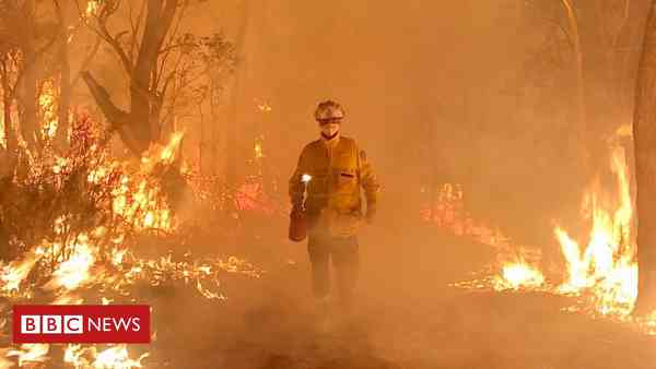 News: Australia fires: The thousands of volunteers fighting the flames - BBC News
