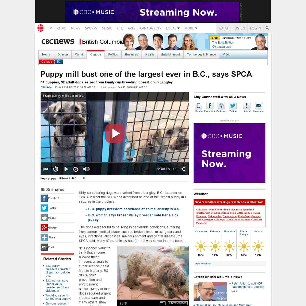 Puppy mill bust - largest ever in B.C.