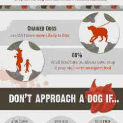 Dog bite facts and prevention measures | Visual.ly