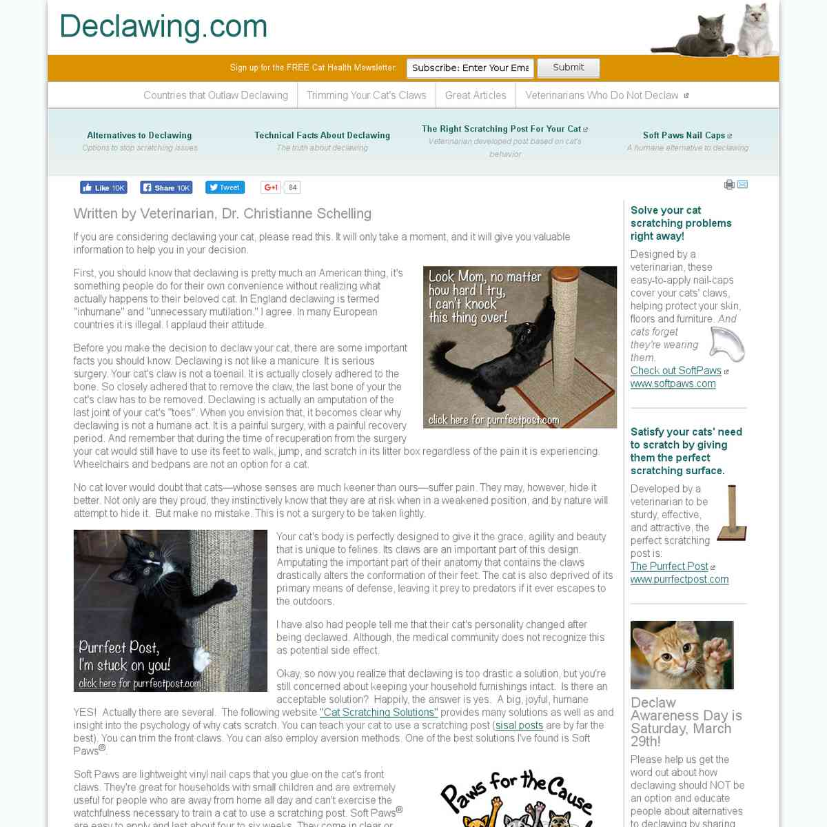 Declawing - What You Should Know