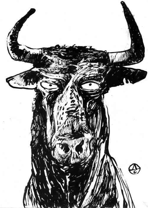 Drawings | Bull