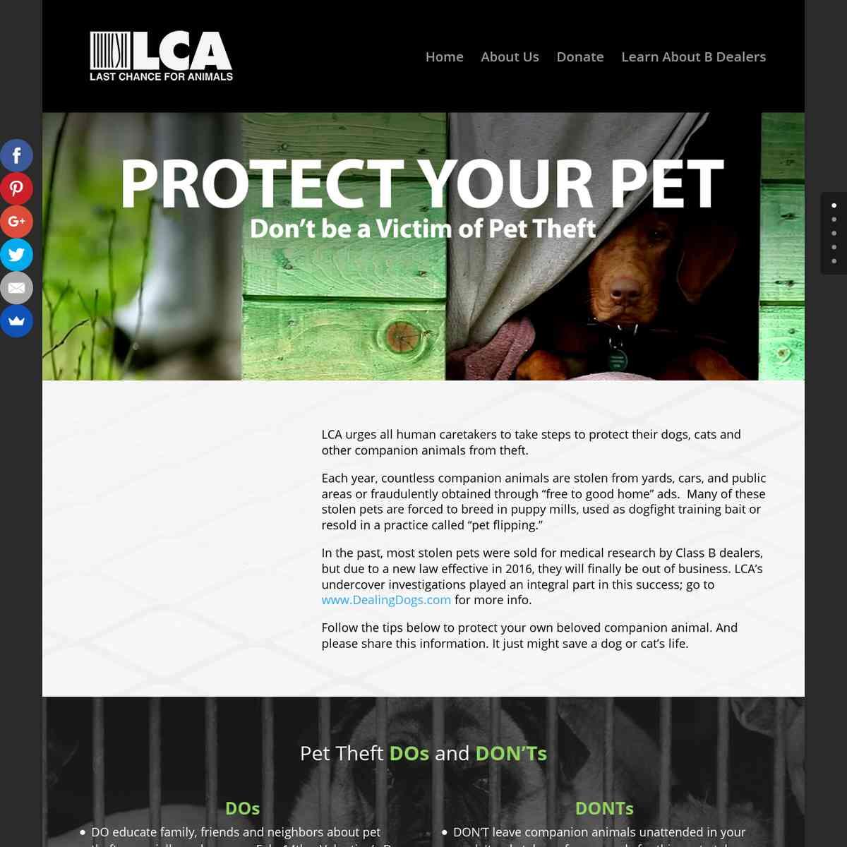 Stolen Pets - Pet Theft Awareness Day 2/14