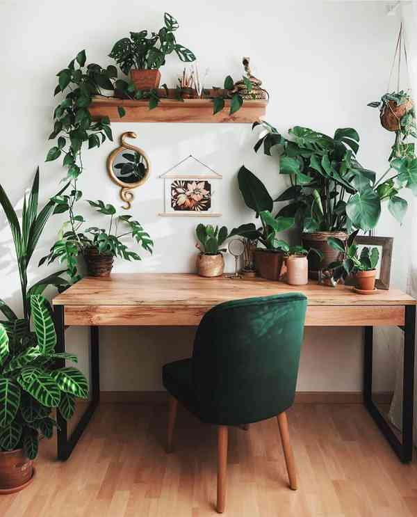 """The Potted Jungle on Instagram: """"Who else is trying to turn their #wfh desk into something like t…"""