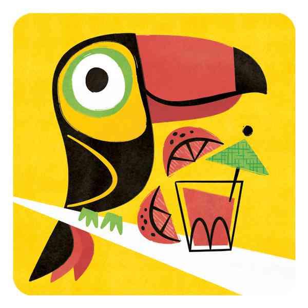 Animal Cards   Toucan