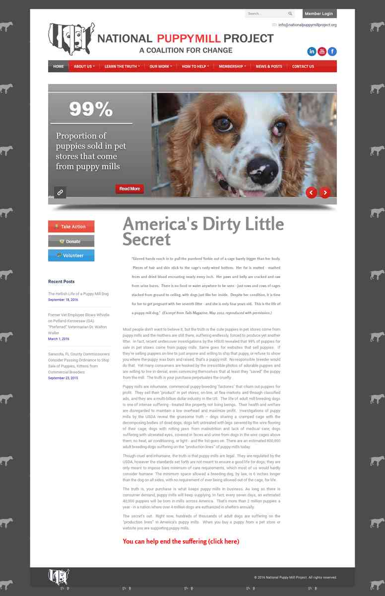 National Puppy Mill Project