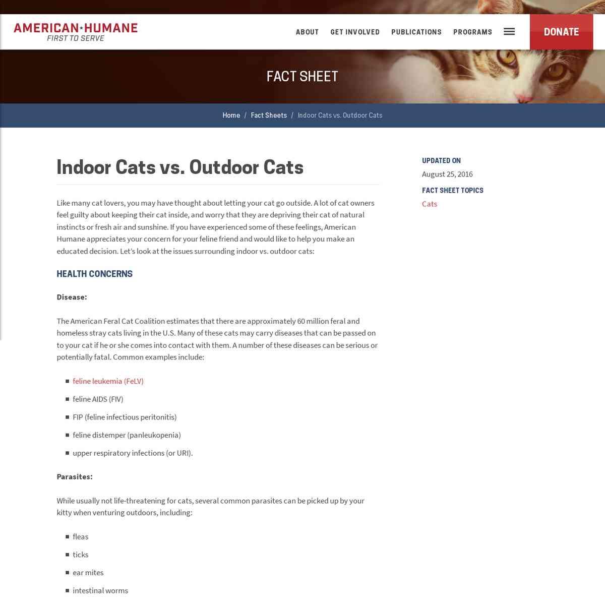 Indoor Cats vs. Outdoor Cats